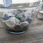 shells on porch table outside area 51