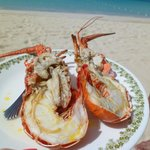 Lobster on the Beach
