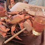 hot crabs and cold beer