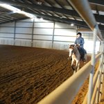 Reining Lesson in the arena