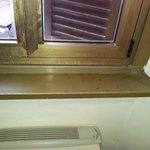 Forme di muffa vivono nelle finestre stile anni 70!!!