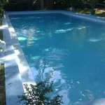 The pool the wife spent $20k for, house cost $8k.