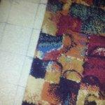 Bits on the carpet!