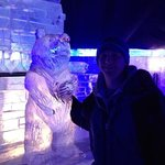 cool bear in the ice bar