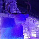 deer above the fire place in the ice bar.