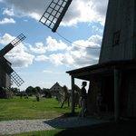 Angla Windmill Park