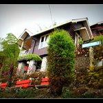 Photo de Resort Tree-Fern