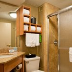 King Study Bathroom with Shower