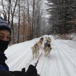 What a rush cruising down a beautifully snowy trail behind 10 Siberian Huskies!