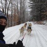 What a rush cruising down a beautifully snowy trail behind 10 Siberian Huskies!