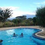 view of Mt. Kilimanjaro from the swimming pool.