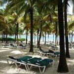 plage privée de l'hôtel