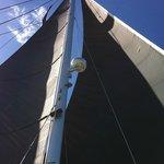 I just loved the black sails!