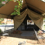 Try our equipped Safari Tents!