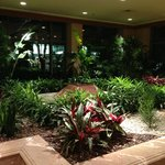 Gorgeous landscaped lobby