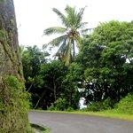 Les routes de Ste-Lucie
