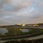 View from Legends Sports bar, Calder & Sun Life stadium