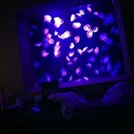 jellyfish room VIP