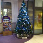 beautiful christmas tree at premier inn