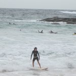 Manly surfing