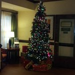 Christmas tree at entry