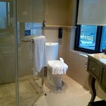Bathroom with auto controllable curtains