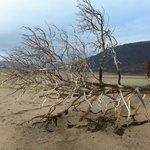 On the beach near Storslett
