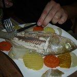 Das Abendessen, ein vorzüglicher frischer Fisch