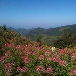 Near Khun yuam