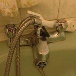 scum all around taps and bath. grubby shower head