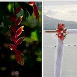 Beautiful flowers/wedding site