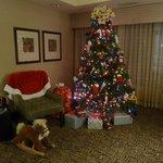Hotel Lobby for Christmas