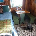 pet friendly cabin at La Paloma