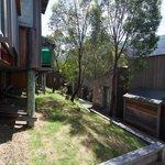 paths between cabins - lots of steps
