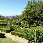 lilifels garden