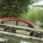 the peaceful Japanese garden
