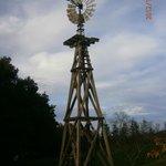 Windmill on property
