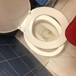 broken toilet seat that wasnt right size