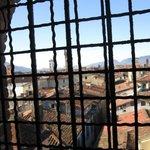 Panorama dalle scale della Torre Guinigi.