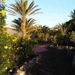 Les jardins tropicaux