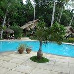 Mandaya Pool