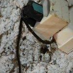 Cable dégueulasse... dernier nettoyage du temps de Mme Carcas