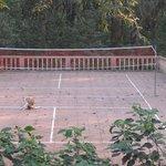 The Badminton Court