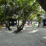 Small kids playground with shady trees, Natural sun protection!