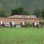 show de caballos de paso frente al comedor