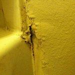 mold in bathroom, wall falling apart