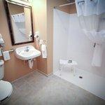 Handicapable Suite Bathroom
