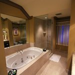 Jacuzzi and shower - you bring the wine!