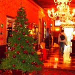 Tree in the lobby of Duodo Palace on Dec 2 2012