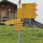 Path signage